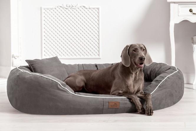 Orthopädisches Hundebett MARLON VISCO PLUS XXXL 170 cm Velours Grau - XXXL | Grau