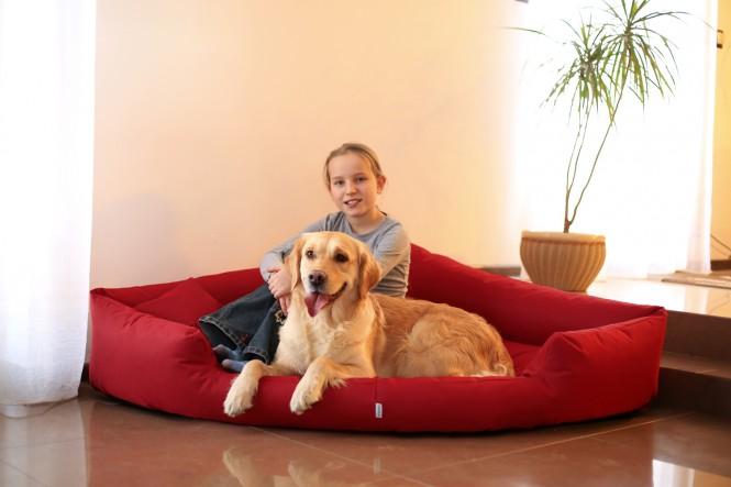Hundebett TRIVIA Polyester 600D