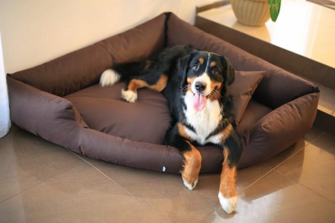 Hundebett TRIVIA M 80 cm Polyester 600D Braun M | Braun