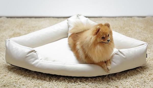 Hundebett TRIVIA M 80 cm Polyester 600D Creme M | Creme