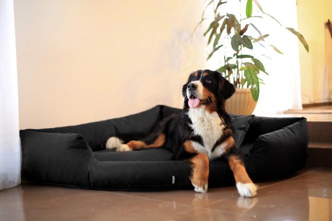 Orthopädisches Hundebett TRIVIA VISCO L 100 cm Polyester 600D Schwarz - L | Schwarz