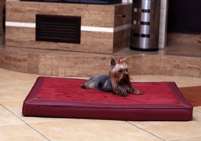 CARLOS VIP | Hundematratze - M | Bordeaux-Rot