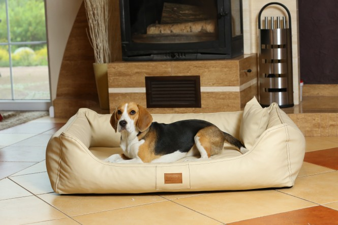 MADDOX EASY CLEAN | Orthopädisches Hundebett