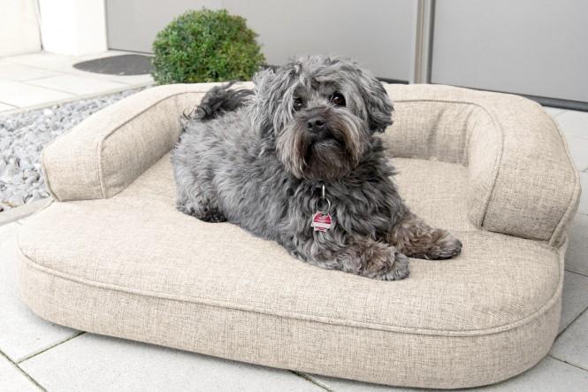 Orthopädisches Hundesofa LOTTE VISCO PLUS M 80 cm Webstoff Mélange Creme Beige M | Beige-Creme