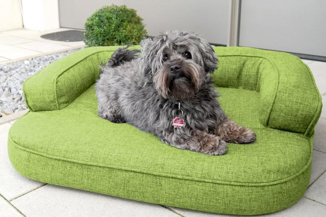 Orthopädisches Hundesofa LOTTE VISCO PLUS M 80 cm Webstoff Mélange Hellgrün M | Hellgrün
