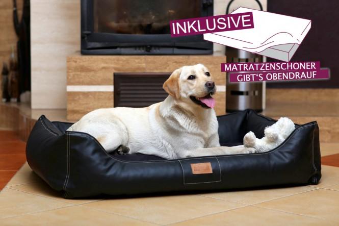 EINZELSTÜCK | Orthopädisches Hundebett MADDOX XL + Schonbezug gratis