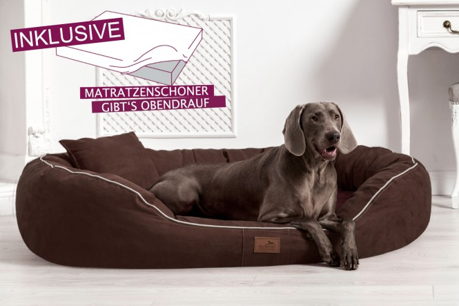 EINZELSTÜCK | Orthopädisches Hundebett MARLON XXXL + Schonbezug gratis