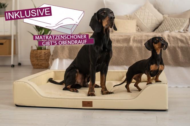 AUSSTELLUNGSSTÜCK | Orthopädisches Hundebett MELODY XL + Schonbezug