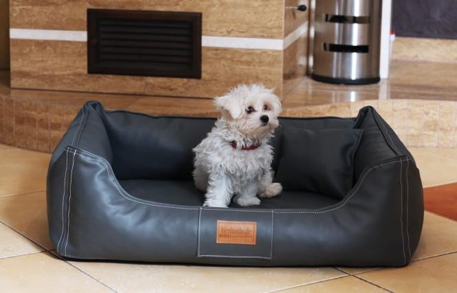 Orthopädisches Hundebett MADDOX VISCO M 80 cm Kunstleder Graphit M | Graphit