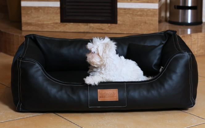 Orthopädisches Hundebett MADDOX VISCO M 80 cm Kunstleder-Velours Schwarz M | Schwarz