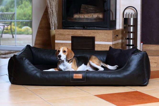 MADDOX | Komfort Hundebett