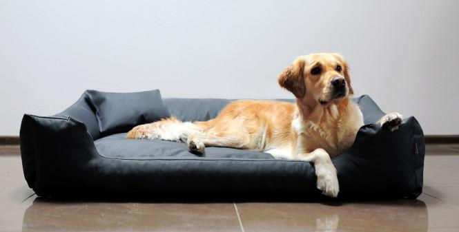 Hundebett MORITZ KOMFORT M+ 90 cm | fest gewebtes Polyester | Graphit M+ | Graphit