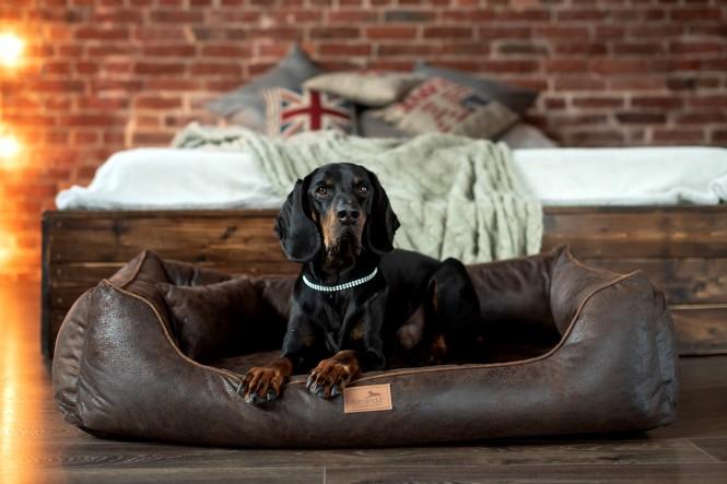 Orthopädisches Hundebett ALBERTO Vintage Velours M 80 cm Braun M | Braun