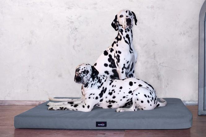 ALICE ANTIRUTSCH | Orthopädische Hundematratze - M | Graphit