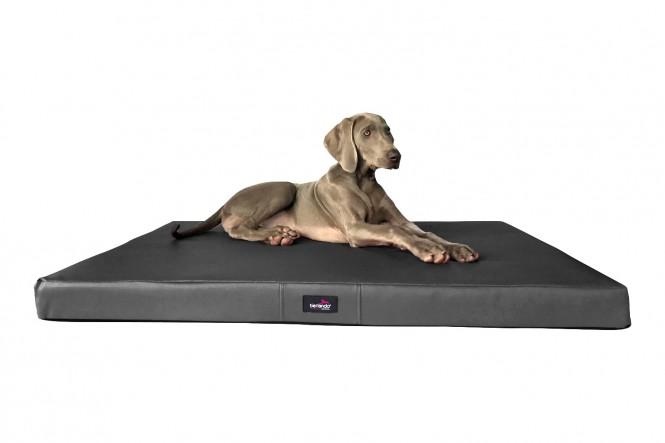 Orthopädische Hundematratze ALICE ALLERGIKER M 80 cm Kunstleder Graphit M | Graphit