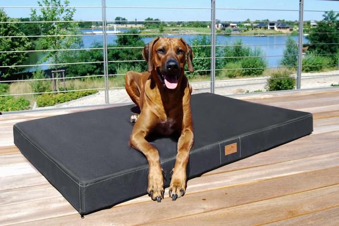Orthopädische Hundematratze HUGO VISCO PLUS L 100 cm Polyester 210D Graphit Grau - L | Graphit