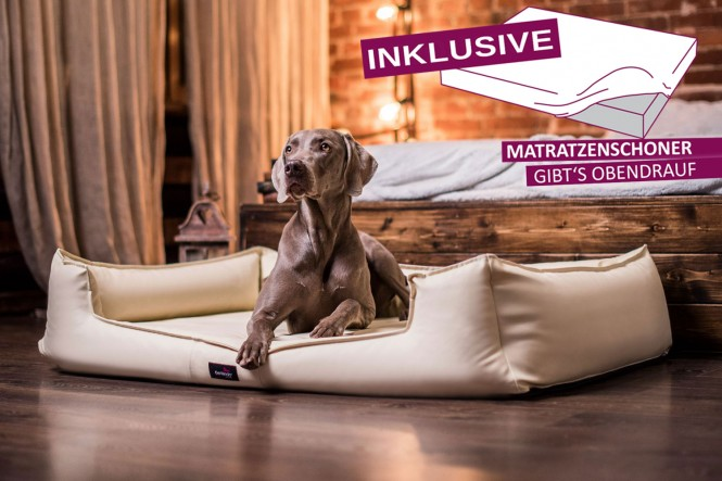Orthopädisches Hundebett GOOFY VISCO M+ 90 cm Kunstleder Creme M+ | Creme