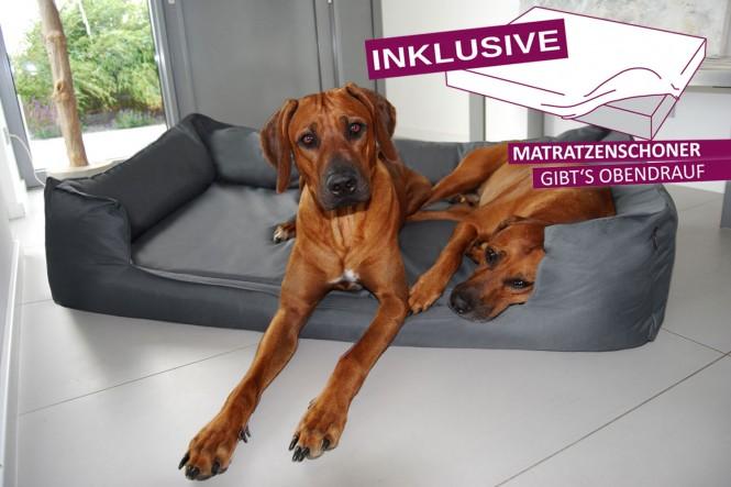 Orthopädisches Hundebett GOOFY VISCO<br> | >>> inkl. Matratzenschoner <<< | XL+ 130 cm Polyester 600D Graphit - XL+ | Graphit