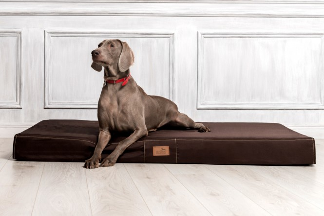 Hundematratze HUGO BASIC M 80 cm Polyester 210D Braun M | Braun