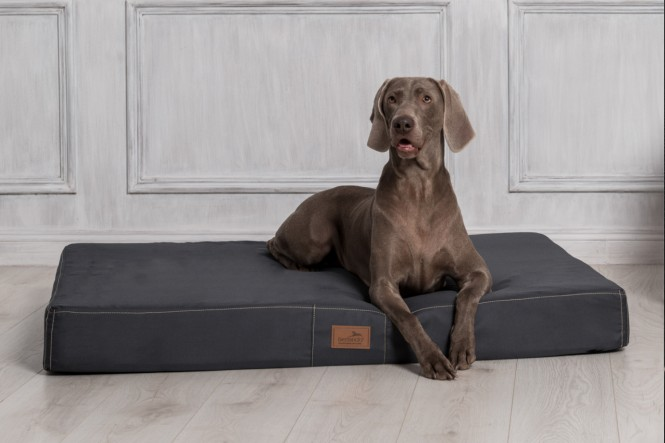 Hundematratze HUGO BASIC XL 120 cm Polyester 210D Graphit Grau - XL | Graphit