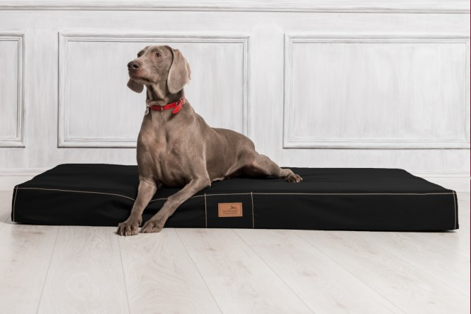 Hundematratze HUGO BASIC XL 120 cm Polyester 210D Schwarz - XL | Schwarz