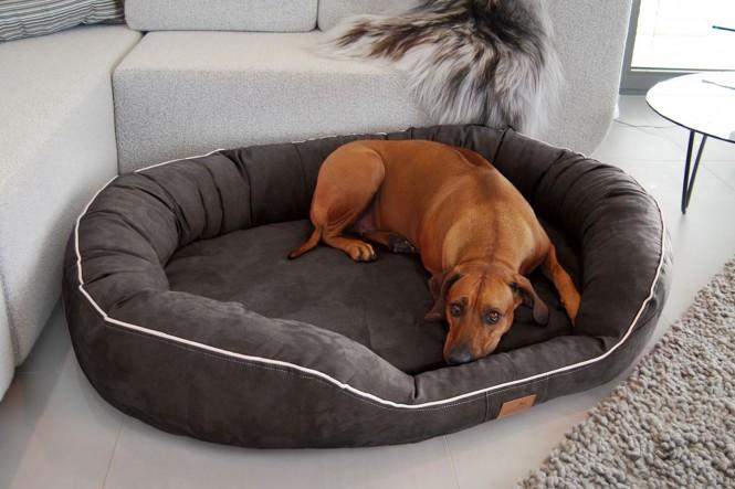MARLON SOFT | Orthopädisches Hundebett - M | Graphit