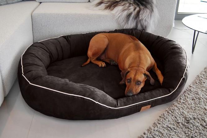 Orthopädisches Hundebett MARLON VISCO PLUS L 100 cm Velours Schwarz - L | Schwarz