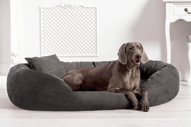 Orthopädisches Hundebett SAMMY VISCO L 100 cm High-Tech Velours Triton Graphit L | Graphit