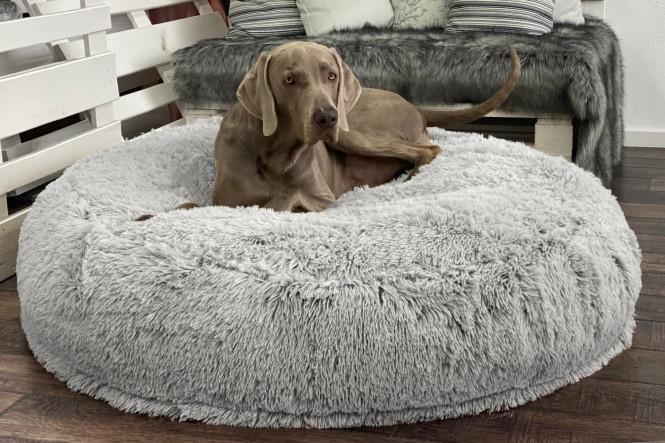 DOGNUT | Orthopädisches Hundebett XL | Weiß