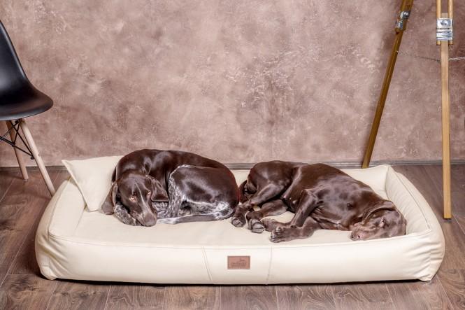 Weiche orthopädische Premium Hundematratze CLIFFORD ORTHO LATEX L 100 cm Kunstleder Creme - L   Creme