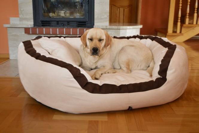 Orthopädisches Hundebett PEPPER ORTHO PLUS XL 135 cm Velours Creme - XL | Creme