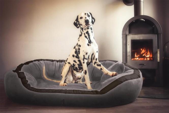 Orthopädisches Hundebett PEPPER ORTHO PLUS L 110 cm Velours Grau L | Grau