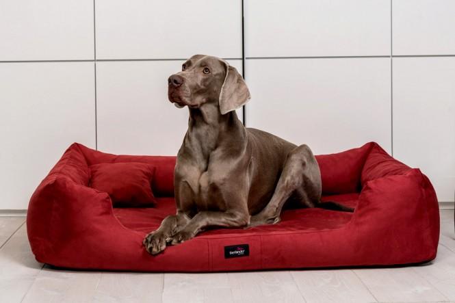 Hundebett MORITZ KOMFORT M+ 90 cm | samtweiches Velours | Bordeaux-Rot M+ | Bordeaux-Rot
