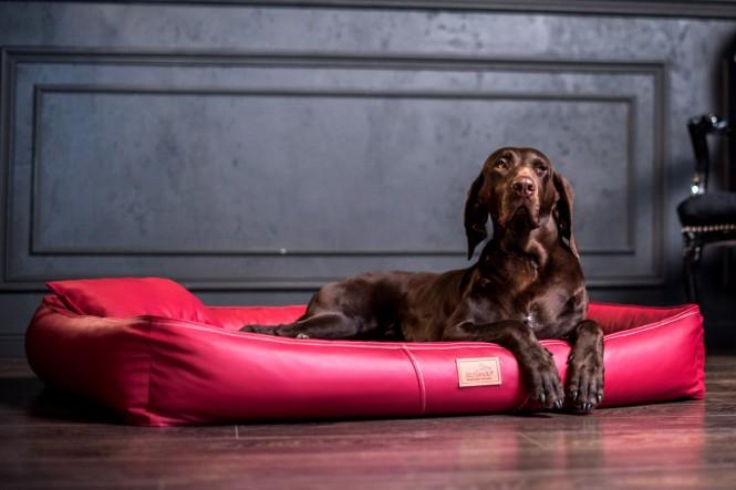 Weiche orthopädische Premium Hundematratze CLIFFORD ORTHO LATEX M 85 cm Kunstleder Bordeaux M   Bordeaux-Rot