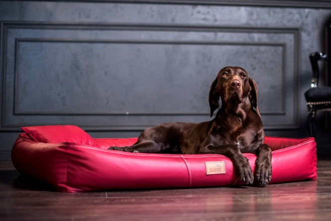 Weiche orthopädische Premium Hundematratze CLIFFORD ORTHO LATEX M 85 cm Kunstleder und High-Tech-Velours Bordeaux Rot M | Bordeaux-Rot