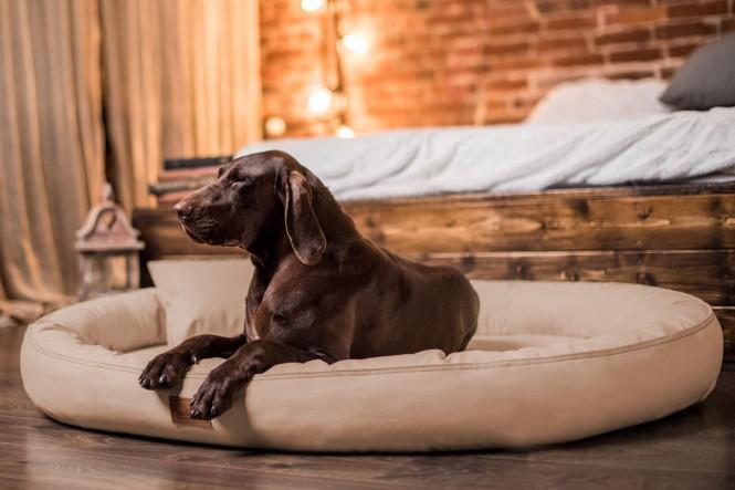 Weiche orthopädische Premium-Hundematratze GILBERT ORTHO LATEX SOFT High-Tech-Velours / Kunstleder