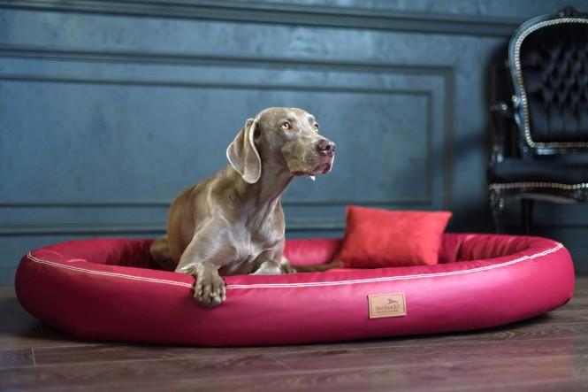 Weiche orthopädische Premium-Hundematratze GILBERT<br>SOFT M 85 cm High-Tech-Velours und Kunstleder | 04 Bordeaux M | Bordeaux