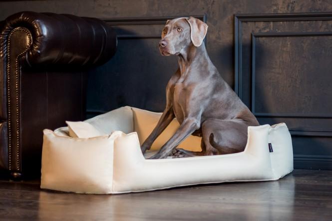 SPENCER | Orthopädisches Hundebett