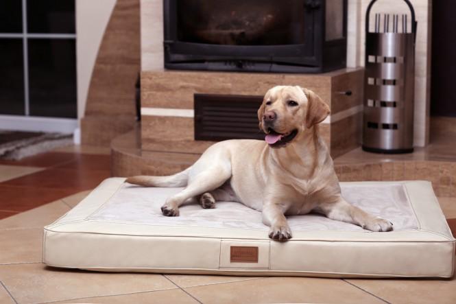 Orthopädische Hundematratze OSCAR VISCO L 100 cm Velours Kunstleder Creme L | Creme
