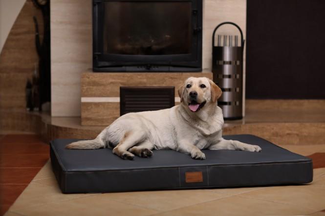 Orthopädische Hundematratze OSCAR  VISCO XL 120 cm Kunstleder Graphit - XL | Graphit