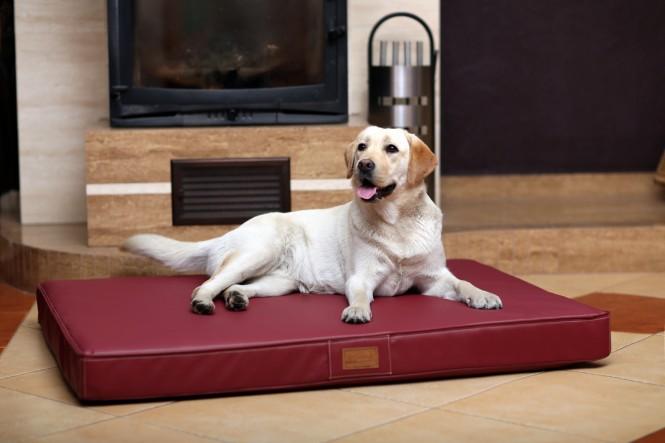 Orthopädische Hundematratze OSCAR VISCO L 100 cm Bordeaux-Rot L | Bordeaux-Rot