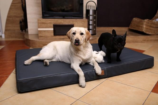 Orthopädische Hundematratze OSCAR VISCO XXL 150 cm Kunstleder Graphit - XXL | Graphit