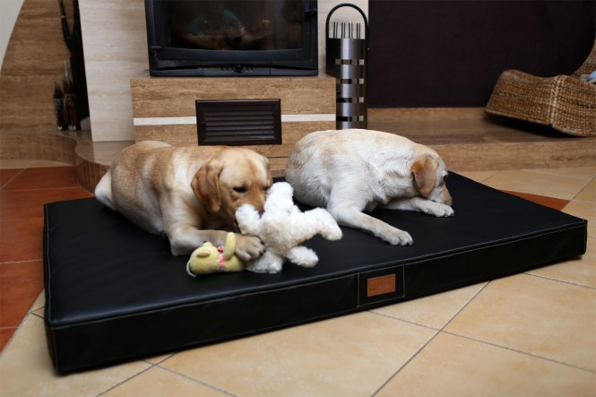 Orthopädische Hundematratze OSCAR  VISCO XXL 150 cm Kunstleder Schwarz - XXL | Schwarz