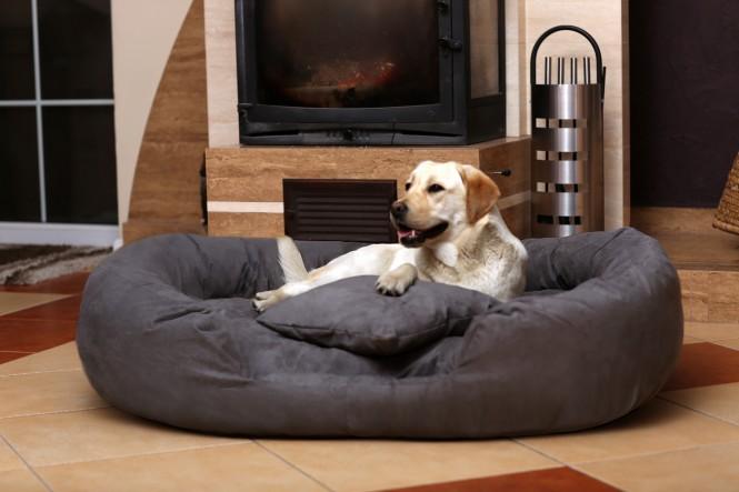 Hundebett PHILIP XL 110 cm Velours Graphit XL | Graphit