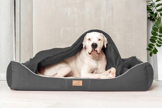 RUDOLPH | Orthopädisches Hundebett M+ | Graphit