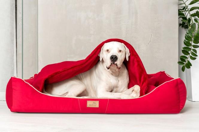 RUDOLPH | Orthopädisches Hundebett