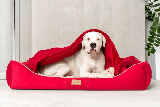 RUDOLPH   Orthopädisches Hundebett M+   Rot