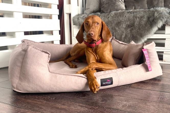 SCARLETT | Orthopädisches Hundebett M+ | Rose
