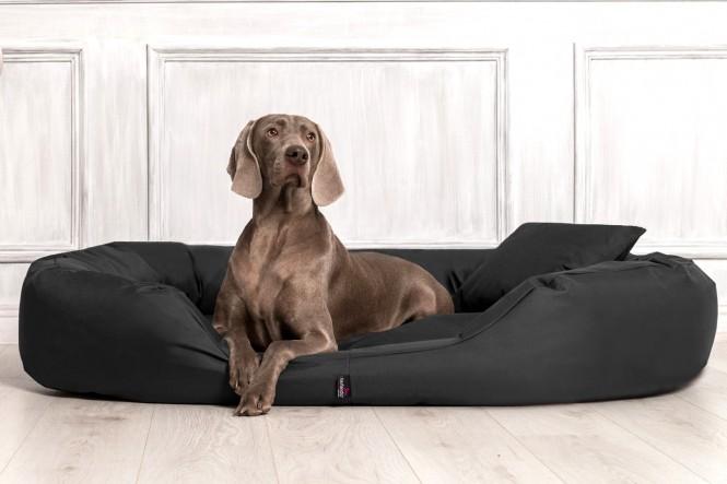 Orthopädisches Hundebett SAMMY VISCO L 100 cm Polyester 600D Anthrazit - L | Anthrazit