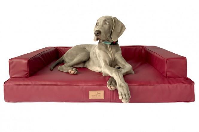 GIBSON | Orthopädisches Hundesofa M | Bordeaux-Rot